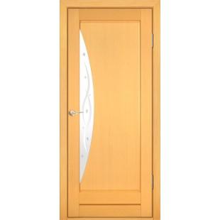 Дверь Композит Тип 209ДФО